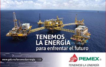 Procedimientos de contratación bajo la normatividad aplicable a Petróleos Mexicanos y sus Empresas Productivas Subsidiarias
